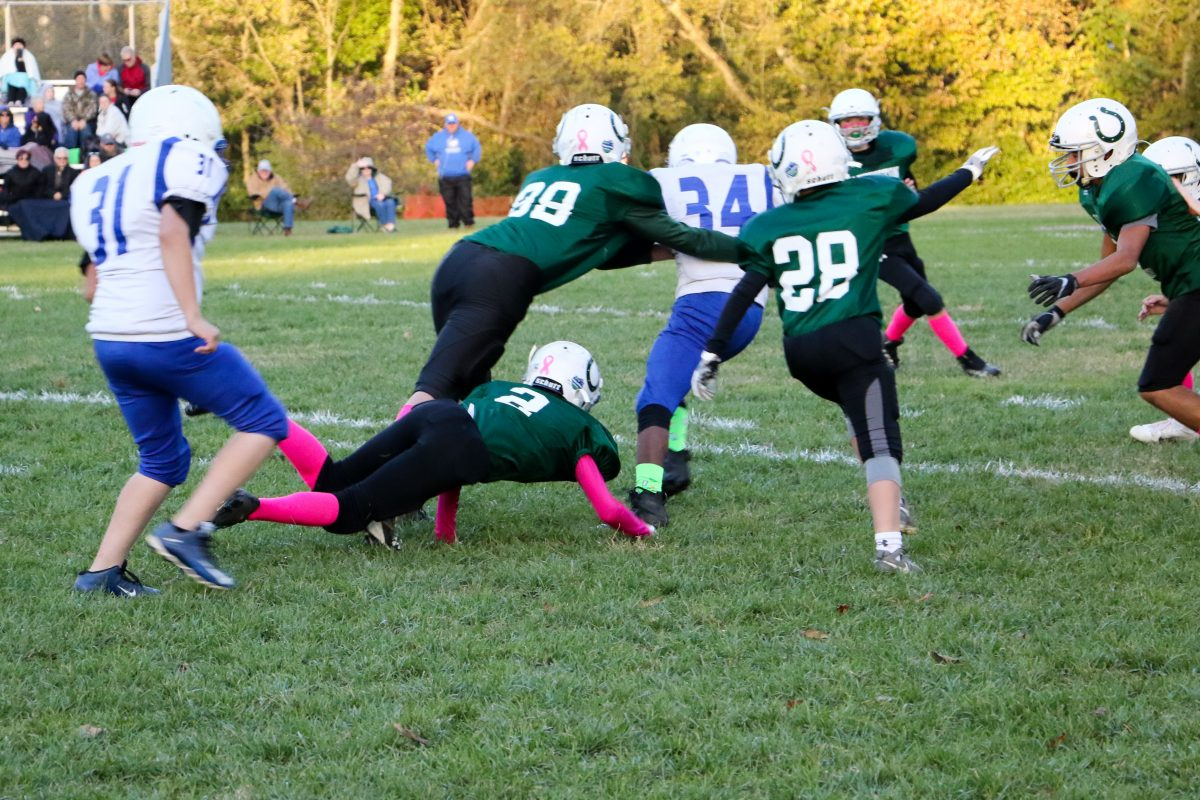 TLS Fall Sports Highlight Resilience and Teamwork [Video and Photos